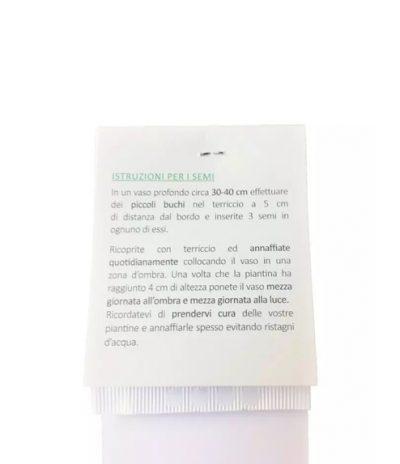 Retro Segnalibro Eko Bookmark in Carta Riciclata Con Semi Versione Standard