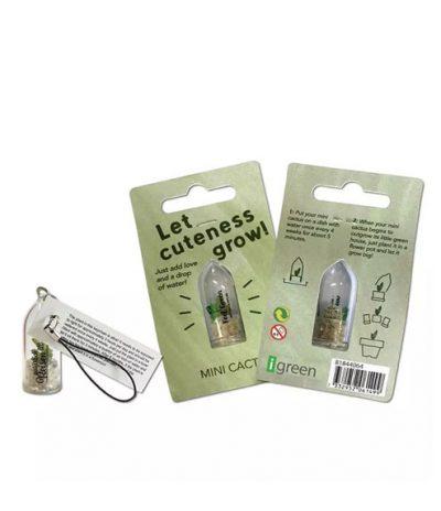 Portachiavi Mini Cactus con Template per Personalizzazione Packaging & Capsula