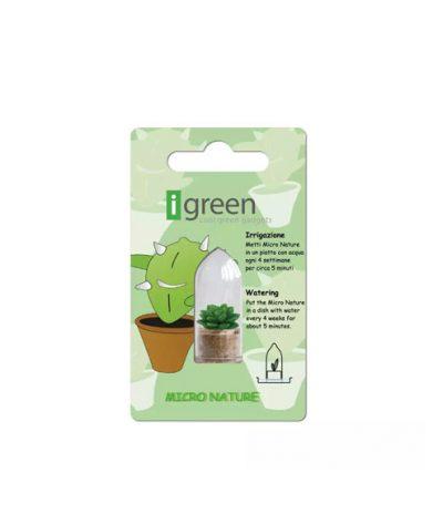 Portachiavi Mini Cactus con Packaging iGreen