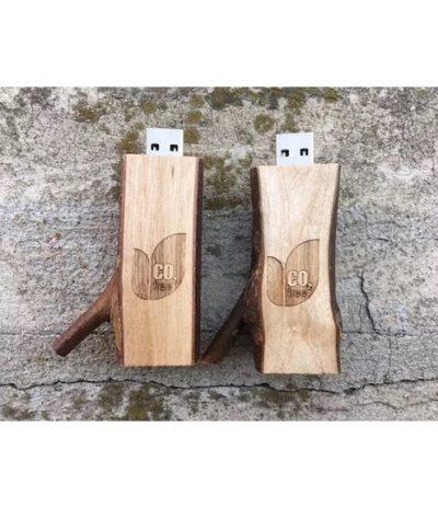 USB in forma di Rametto d'Albero con Legno Naturale per CO2