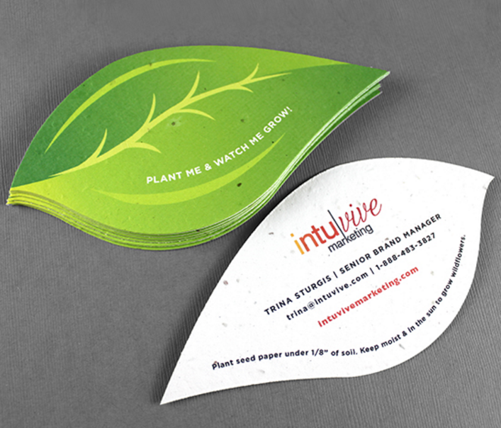 Business Card Piantabile