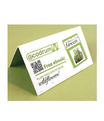 Biglietto da Visita in Carta Piantabile per Progetto Ecodrum