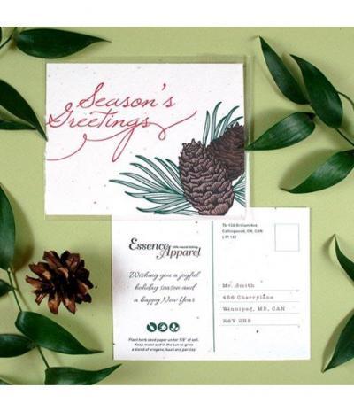 Cartolina Piantabile Fronte & Retro per Progetto Essence Apparel
