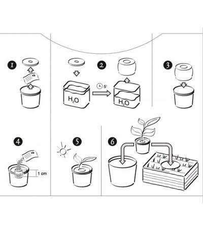 Istruzioni Green Espresso Vasetto Compostabile in Lolla di riso