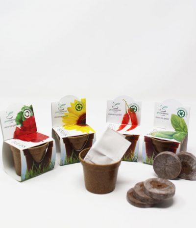 Green Espresso Vasetto Compostabile in Lolla di riso con Semi di Geranio Peperoncino Basilico e Geranio