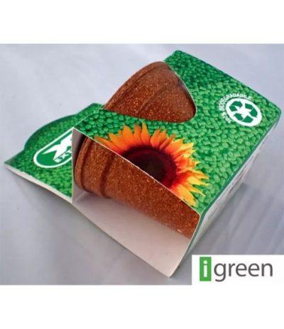 Green Espresso | Progetto Finproject