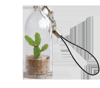 Portachiavi Con Capsula Mini Cactus