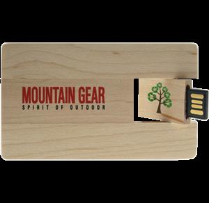 usb-card-legno-igreen
