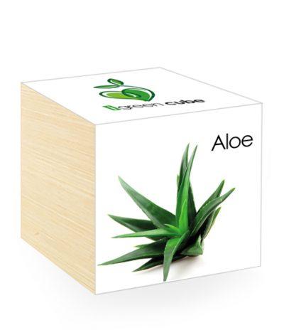 Cubo in legno iGreen Cube 7.5x7.5 cm Aloe con Confezione avvolgente Standard