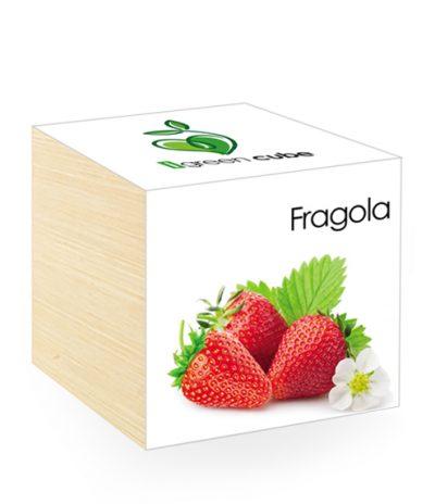 Cubo in legno iGreen Cube 7.5x7.5 cm Fragola con Confezione avvolgente Standard