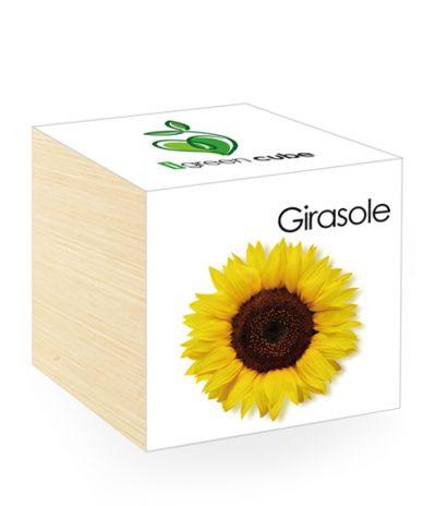 Cubo in legno iGreen Cube 7.5x7.5 cm Girasole con Confezione avvolgente Standard