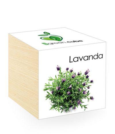 Cubo in legno iGreen Cube 7.5x7.5 cm Lavanda con Confezione avvolgente Standard