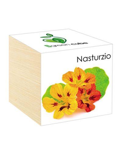 Cubo in legno iGreen Cube 7.5x7.5 cm Nasturzio con Confezione avvolgente Standard