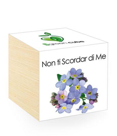 Cubo in legno iGreen Cube 7.5x7.5 cm Non ti Scordar di Me con Confezione avvolgente Standard
