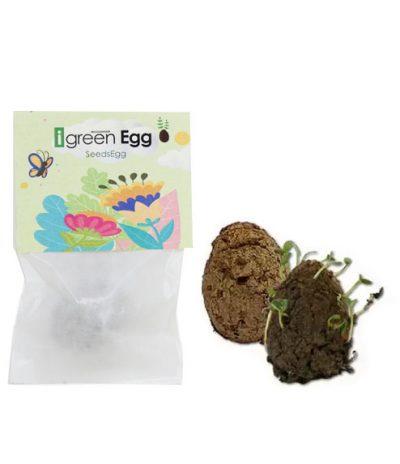 Seedegg Bombe di Semi con Packaging Singolo Personalizzato con logo iGreen