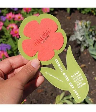 Fiore in Carta Piantabile con Mix di Fiori di Campo Esempio 5