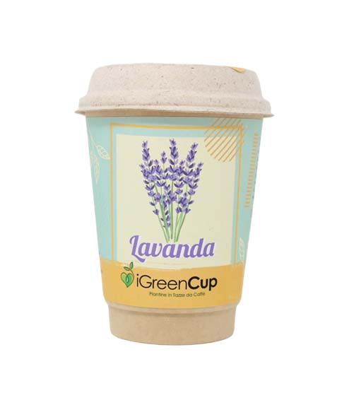 iGreen-Cup-Lavanda