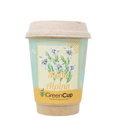 iGreen Cup Tazza da Caffè Bio con Fiori & Piante Seme Stella Alpina