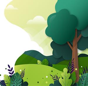 Adotta un Albero Compensa CO2