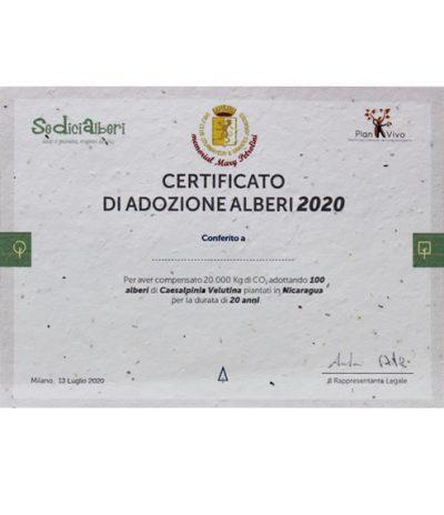 Certificato per Pianta/Adotta un albero per Progetto Golf Club Courmayeur
