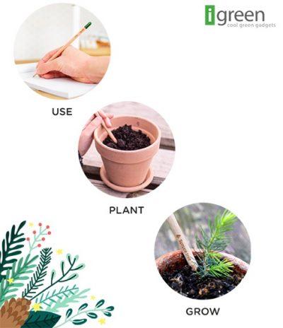 Matita Sprout Piantabile versione Christmas Tree Istruzioni per piantarla